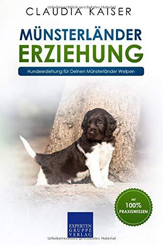 Münsterländer Erziehung: Hundeerziehung für Deinen Münsterländer Welpen