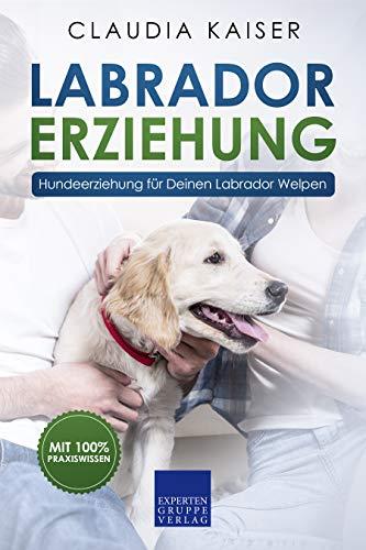Labrador Erziehung: Hundeerziehung für Labrador Welpen (Labrador Band 1)
