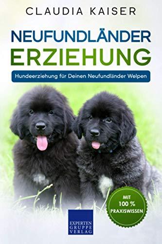 Neufundländer Erziehung: Hundeerziehung für Deinen Neufundländer Welpen