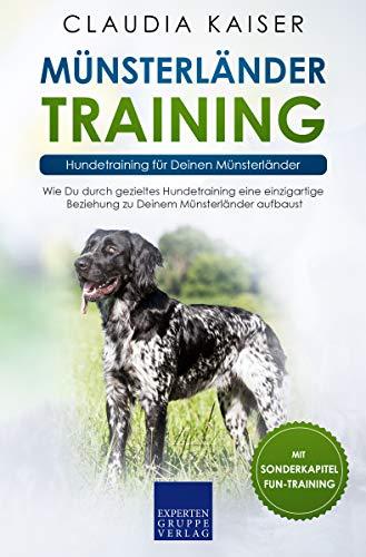 Münsterländer Training: Hundetraining für Deinen Münsterländer