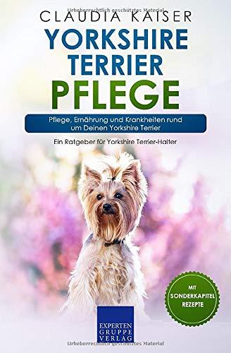 Yorkshire Terrier Pflege: Pflege, Ernährung und Krankheiten rund um Deinen Yorkshire Terrier