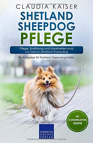Shetland Sheepdog Pflege: Pflege, Ernährung und Krankheiten rund um Deinen Shetland Sheepdog