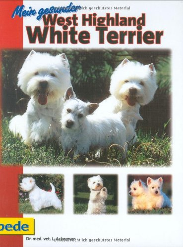 Mein gesunder West Highland White Terrier