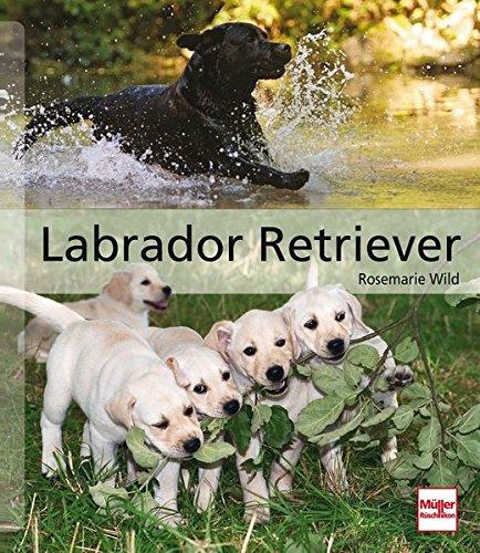 Labrador Retriever: Das große Rassehandbuch (Hunderassen)