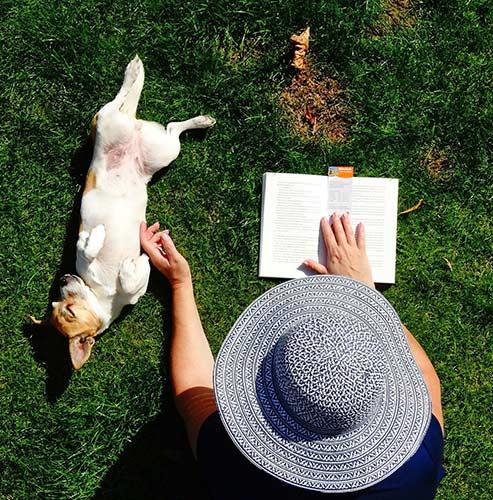 Hundebuch lesen